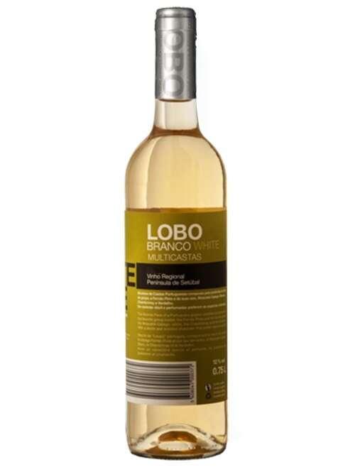 Lobo Branco Portugal